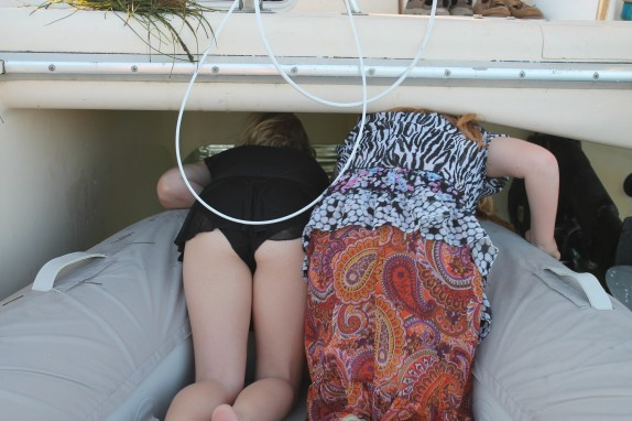 Lily and Emily trying to squeeze under Foxtrot.