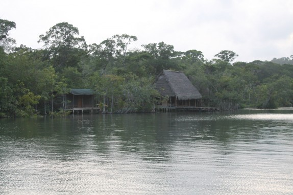 We have seen lots of thatched roofs but they really look at home along a jungle river.
