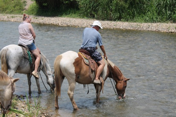 Pam and Randall leading the way across the San Marcos River. The horses were happy to linger in the cool water.