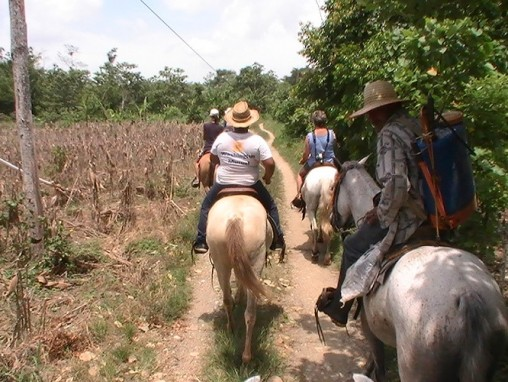 This caballero was spraying the crops by horseback and joined us for part of the ride. His horse got ours all excited and ready to race.