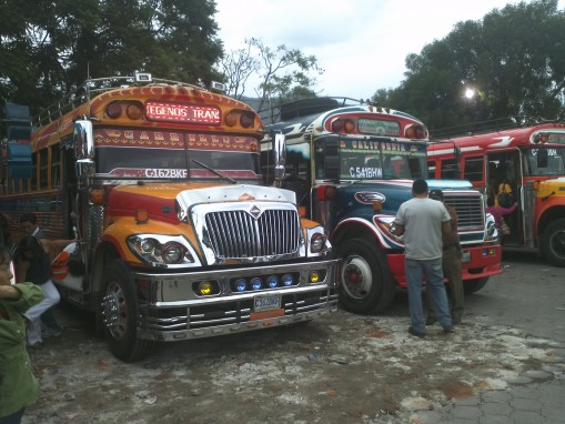 Chicken buses lined up and waiting