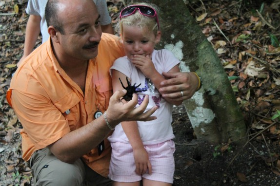 Our Tikal guide giving Molly up close view of a Tarantula. Michelle said that on her Tikal visit several years ago, the tarantula was passed around to everybody in the group. Our guide must not condone this form of tarantula abuse.