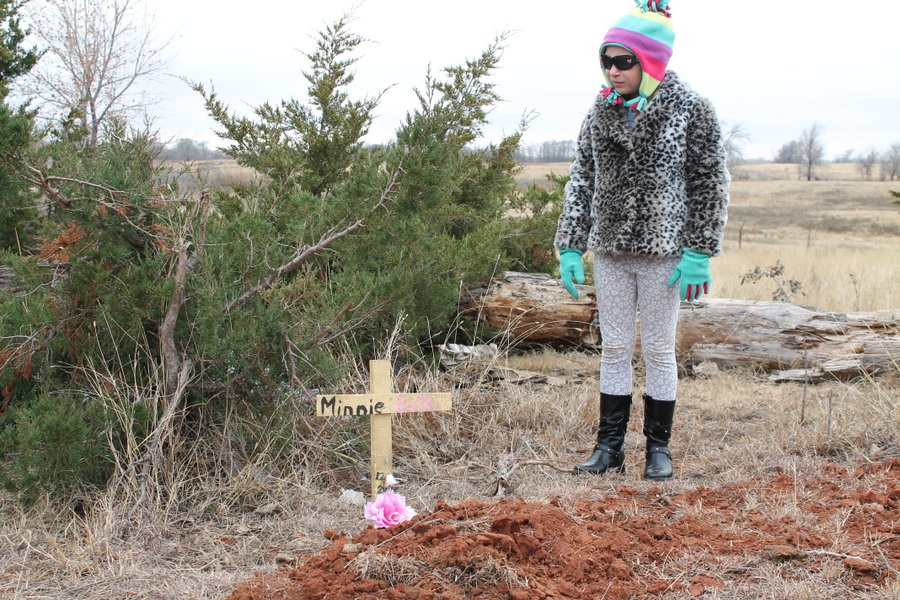 Her grave is under an old cottonwood near the junk pile, one of Minnie's favorite sniffing spots.