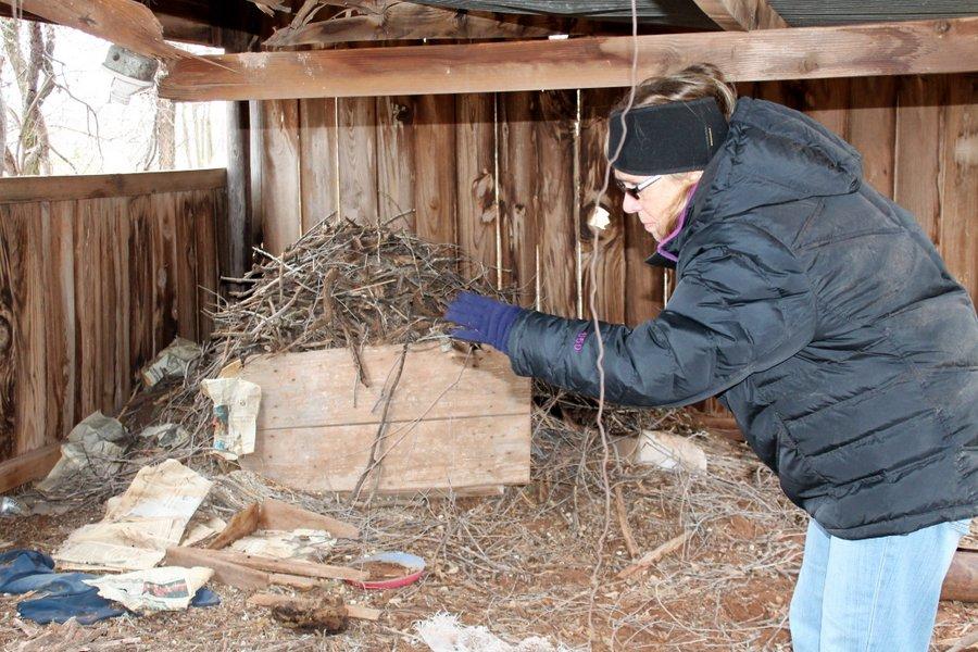 Toni visiting the Wood Rat Housing Development