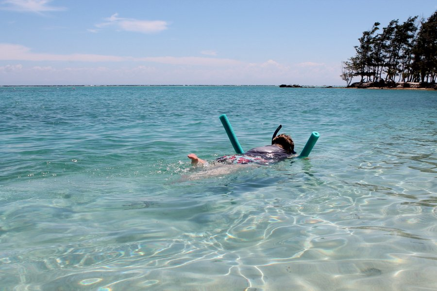 Faye in pursuit of a barracuda.