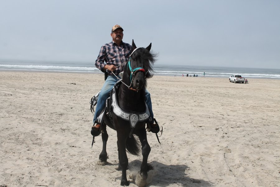 Vaquero exercising his horse on the beach.