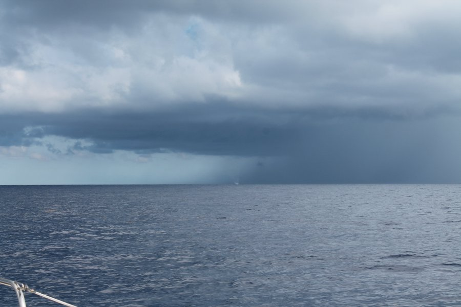 Between Cozumel and Cancun, we spotted a waterspout in an upcoming squall. It is small in the picture but it is a little white circle in the middle of the horizon. There was five minutes of laser focus on this little piece of excitement.