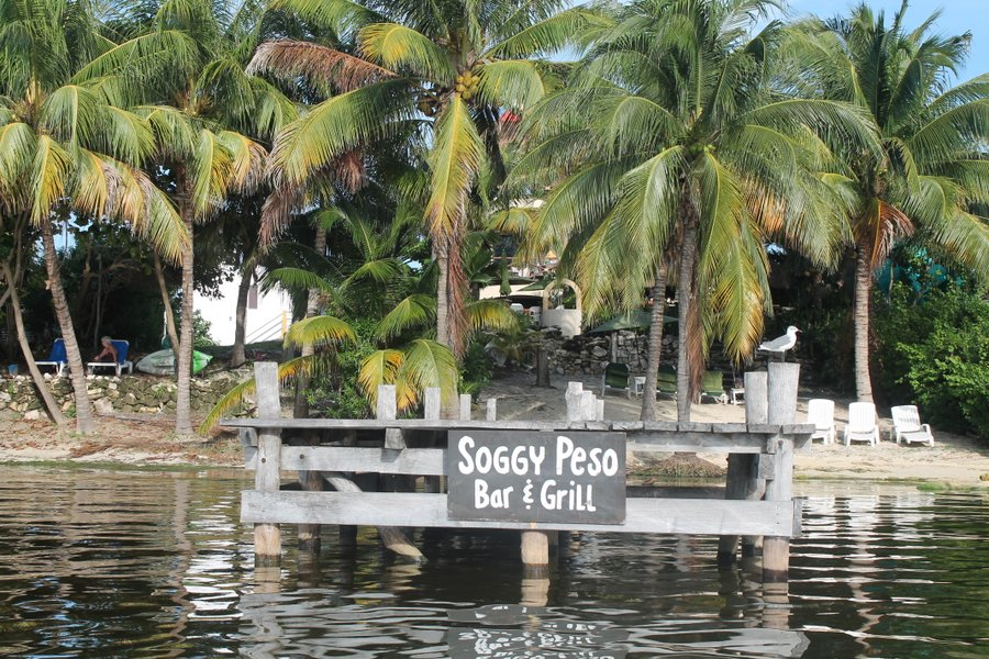 Soggy Peso is right next door. We had lobster tacos there one night and Randall drops in for an occasional Margarita-to-go.