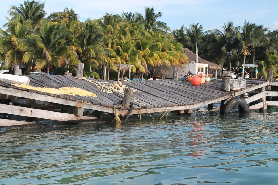 Try walking this dock after a couple of Soggy Peso Margaritas.