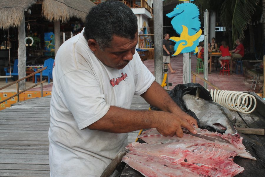 Felix getting the big grouper cut just right.